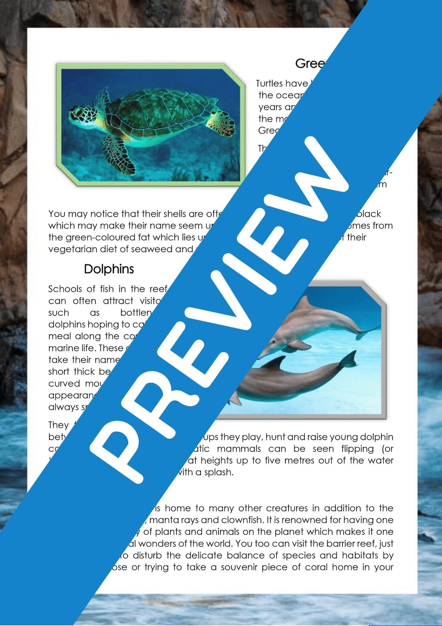 Oceans / Under the Sea / Great Barrier Reef Information ...